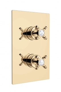 Bristan 1901 Recessed Thermostatic Dual Control Valve with Integral Diverter - Gold N2 SHCDIV G