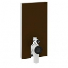 Image for Geberit Monolith Module for Floor Standing 1010mm WC - Umber Glass - 131.002.SQ.5