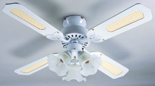 Global Rio Ceiling Fans