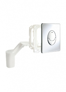 Grohe Skate Air Set Fresh WC Wall Plate 38798