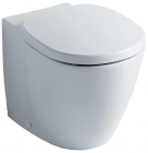 Image for Ideal Standard Concept Back To Wall Pan - E791601