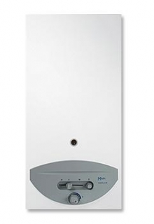 Main Multipoint BF Gas Water Heater