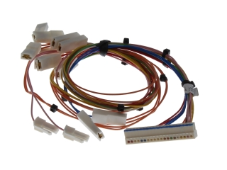 WORCESTER 87161209810 HARNESS MAIN