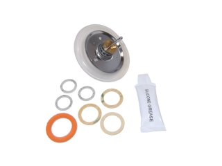 WORCESTER 87161110380 DIAPHRAGM KIT