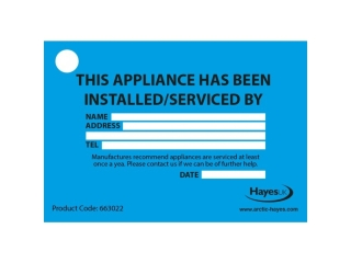 HAYES 663020 INSTALLED/ SERVICE TAGS (PACK OF 10)